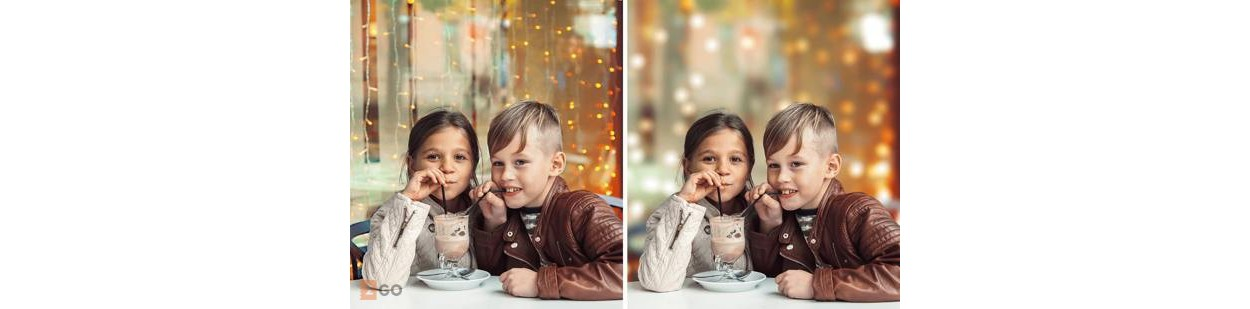 Adobe Photoshop + Premiere Elements 2020 - Olandese - Windows