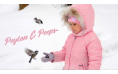Adobe Photoshop Elements + Premiere Elements 2021 | Windows | Meertalig
